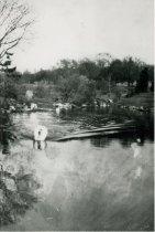 Image of Swan Pond  ca 1919 - 1992.1.5