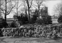 Image of Compton Mansion and  Rock Wall in Rose Garden  1937 - 2004.1.10N