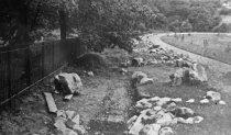 Image of Ravine Garden  1913 - 2004.1.143N