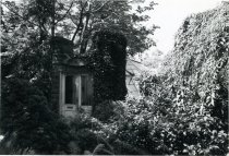 Image of Fernery Entrance with Ivy - 2004.1.160