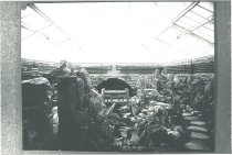 Image of Fernery Interior Without Plants - 2004.1.185