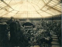 Image of Fernery Interior Without Plants - 2004.1.186