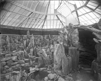 Image of Stone Garden in Fernery - without Ferns  1900 - 2004.1.191