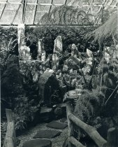 Image of Fernery Interior - 2004.1.199
