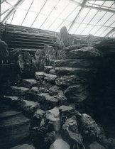 Image of Rock Garden in Fernery - 2004.1.201