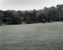 Image of English Park  1992 - 2004.1.326
