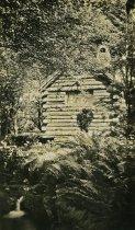 Image of Rustic Log Cabin  abt 1911 - 2004.1.342