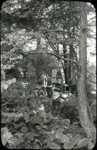 Image of Mrs. Samuel Morris on the Log Cabin Bridge  1933 - 2004.1.351