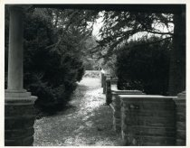 Image of Rose Garden  Winter 1980 - 2004.1.462