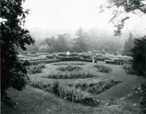 Image of People in the Rainy Rose Garden - 2004.1.478