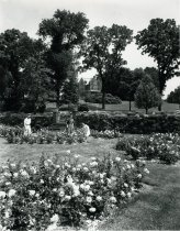 Image of Rose Garden:  Family  1950s - 2004.1.481