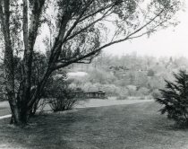 Image of View across English Park  bef 1968 - 2004.1.486