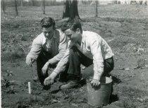 Image of Men Planting  1954 - 2004.1.558