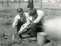 Image of Men Planting  1954 - 2004.1.561