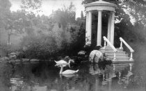 Image of Swan Pond with First Swans  ca.1910 - 2004.1.69