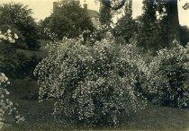 Image of Gates Hall  1913 - 2004.1.693