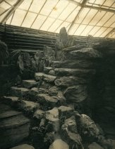 Image of Interior of Fernery - 2004.1.755