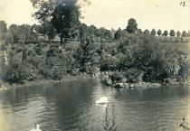 Image of Swans, Pond & Japanese Garden  1909 - 2004.1.79