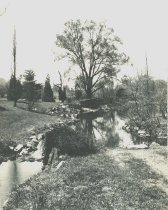 Image of Swan Pond  1934 - 2004.1.81