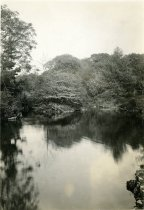 Image of Swan Pond  1933 - 2004.1.82