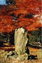 Image of Stone, Japanese - 2004.1.821