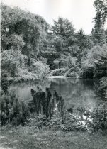 Image of Swan Pond  1947 - 2004.1.83