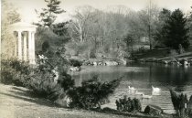 Image of Swan Pond Postcard  circa 1907 - 2004.1.85