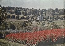 Image of View of Salvia in Formal Garden Across to Hillcrest Lodge  aft. 1904 - 2004.1.856LS