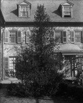 Image of Ilex aquifolia  1900-1915 - 2004.1.859GN