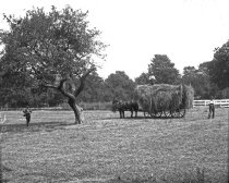 Image of Cedar Grove Hay Wagon and Men - 2004.1.897GN