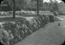 Image of Rose Garden - 2004.1.908LS