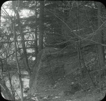 Image of Wissahickon Woods - 2004.1.944LS