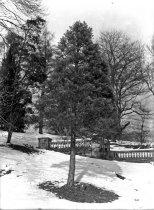 Image of Orange Balustrade in Winter - 2004.1.951N