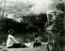 Image of Swan Pond with Family. - 2010.17.1