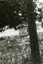 Image of Sign on Tree at Springfield Mills  Circa 1916 - 2010.3.19