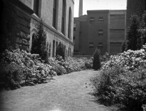 Image of Effingham B. Morris House and Garden  1920 - 2011.6.163