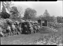 Image of Rose Garden, Rock Wall  1937 - 2011.8.68