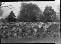 Image of Rock Wall Garden  1937 - 2011.8.97