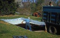 Image of Bog Garden  1959 - 2013.1.114