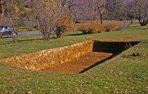 Image of Bog Garden  1958 - 2013.1.116