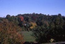 Image of Across Park From Far Corner  1963 - 2013.1.330