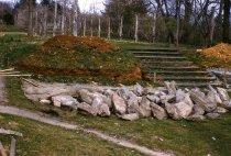 Image of Phlox Rock Garden  1962 - 2013.1.348