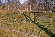 Image of Site of Phlox Garden  1962 - 2013.1.349