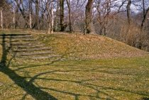 Image of Phlox Rock Garden  1962 - 2013.1.353