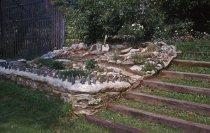 Image of Phlox Rock Garden  1963 - 2013.1.354