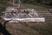 Image of Phlox Rock Garden  1962 - 2013.1.356