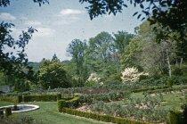 Image of View Across Rose Garden 1955 - 2013.1.413