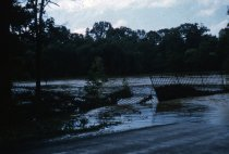 Image of Flooding on Northwestern Avenue 1955 - 2013.1.7