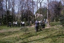 Image of American Holly Society meeting at the Arboretum  1960 - 2013.1.548