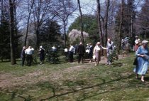 Image of American Holly Society meeting at the Arboretum  1960 - 2013.1.549